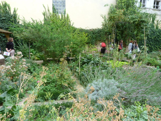 Les jardins du marais - Jardin du clos des blancs manteaux ...
