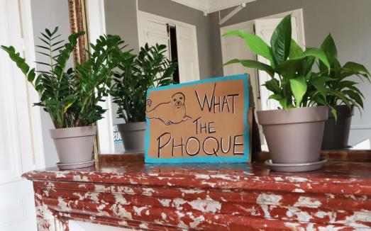 L' Académie du Climat dans l'ancienne Mairie du 4ème : What the Phoque !